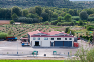 Εγκαταστάσεις Εταιρίας Spartan Treasure στην Σκούρα Λακωνίας (Σπάρτη), Διαδικτυακού Τόπου που αναφέρεται σε Ελιές Καλαμών. Εταιρεία, παραγωγή, τυποποίηση , Ελιές Καλαμάτας, Σκούρα Λακωνίας, Σπάρτη, Εγκαταστάσεις, Εξαγωγές