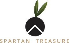 Website Logo Spartan Treasure